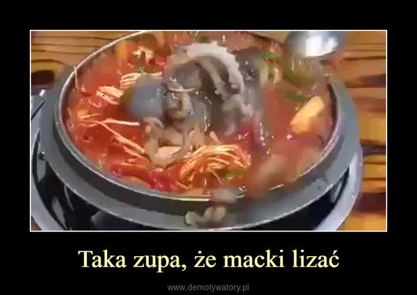 Taka zupa, że macki lizać –