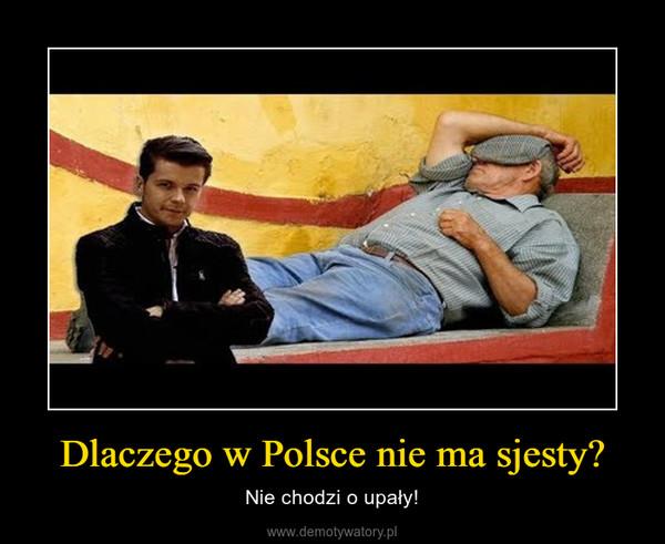 Dlaczego w Polsce nie ma sjesty? – Nie chodzi o upały!