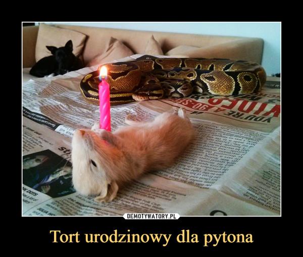 Tort urodzinowy dla pytona –