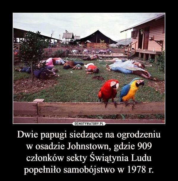 Dwie papugi siedzące na ogrodzeniuw osadzie Johnstown, gdzie 909 członków sekty Świątynia Ludu popełniło samobójstwo w 1978 r. –