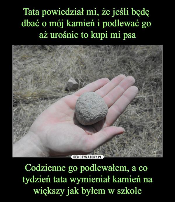 Codzienne go podlewałem, a co tydzień tata wymieniał kamień na większy jak byłem w szkole –
