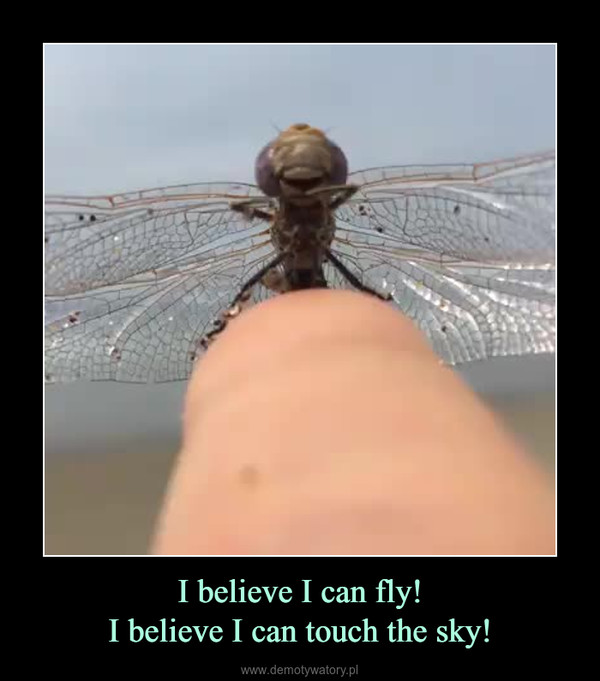 I believe I can fly!I believe I can touch the sky! –