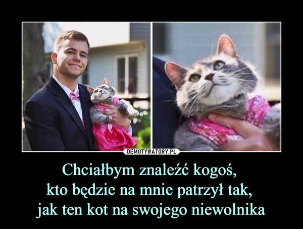 Chciałbym znaleźć kogoś, kto będzie na mnie patrzył tak, jak ten kot na swojego niewolnika –