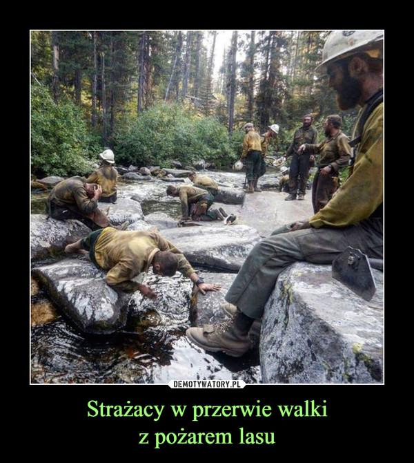 Strażacy w przerwie walkiz pożarem lasu –