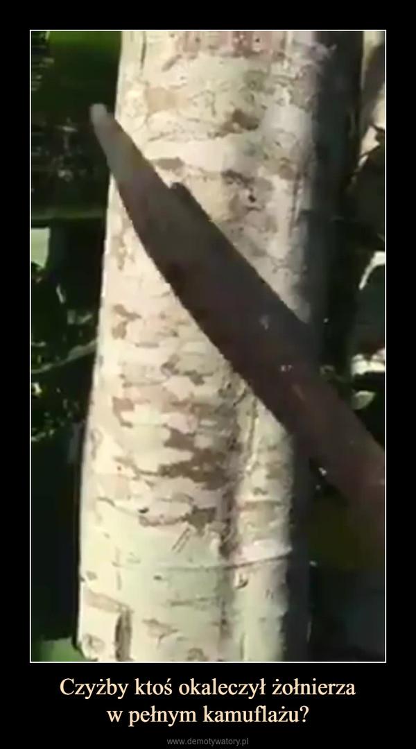 Czyżby ktoś okaleczył żołnierzaw pełnym kamuflażu? –