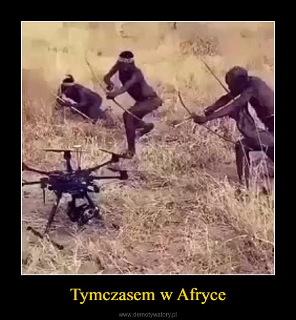 Tymczasem w Afryce –