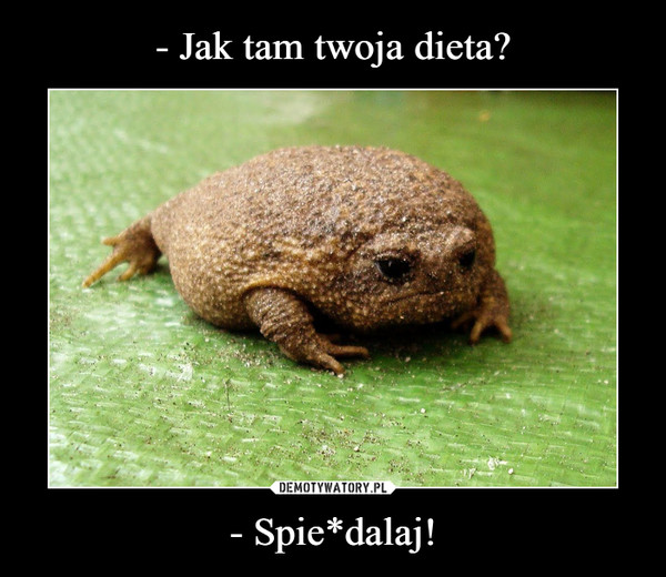 - Spie*dalaj! –