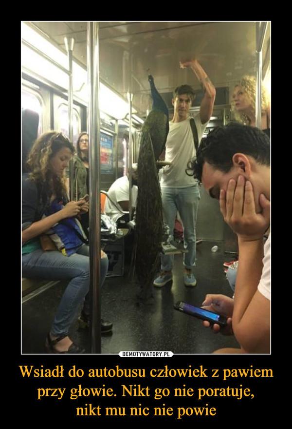 Wsiadł do autobusu człowiek z pawiem przy głowie. Nikt go nie poratuje,nikt mu nic nie powie –