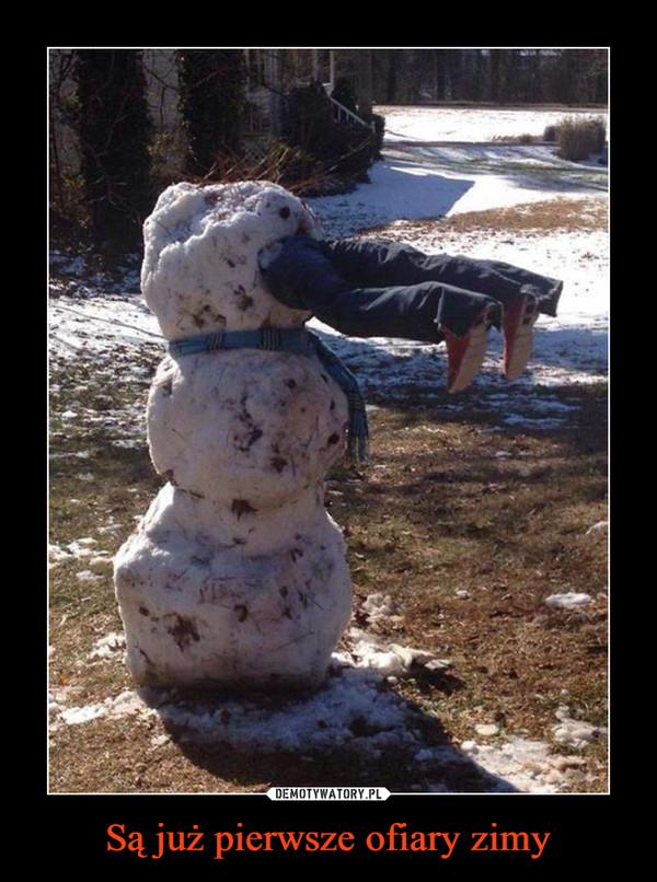 Są już pierwsze ofiary zimy –