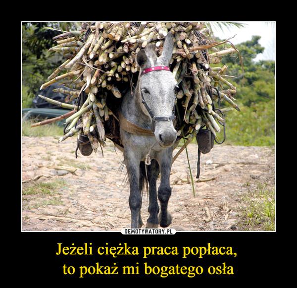 Jeżeli ciężka praca popłaca, to pokaż mi bogatego osła –