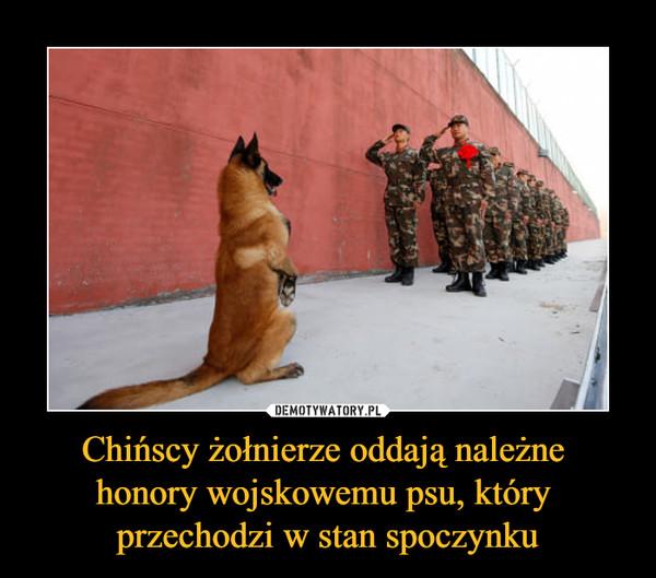 Chińscy żołnierze oddają należne honory wojskowemu psu, który przechodzi w stan spoczynku –