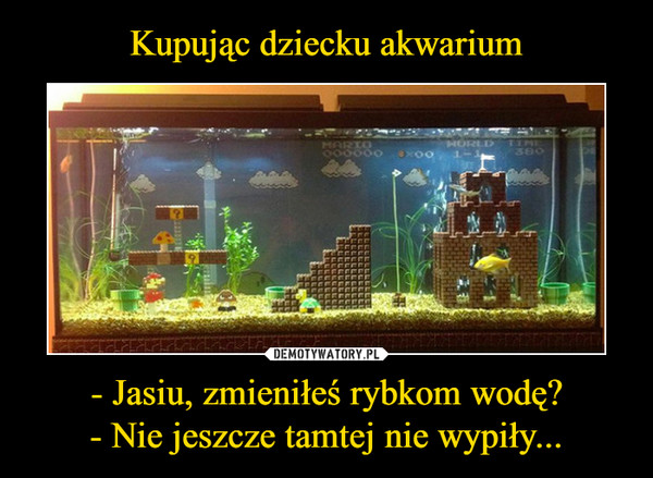 - Jasiu, zmieniłeś rybkom wodę?- Nie jeszcze tamtej nie wypiły... –