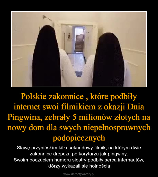 Polskie zakonnice , które podbiły internet swoi filmikiem z okazji Dnia Pingwina, zebrały 5 milionów złotych na nowy dom dla swych niepełnosprawnych podopiecznych – Sławę przyniósł im kilkusekundowy filmik, na którym dwie zakonnice drepczą po korytarzu jak pingwiny.Swoim poczuciem humoru siostry podbiły serca internautów, którzy wykazali się hojnością