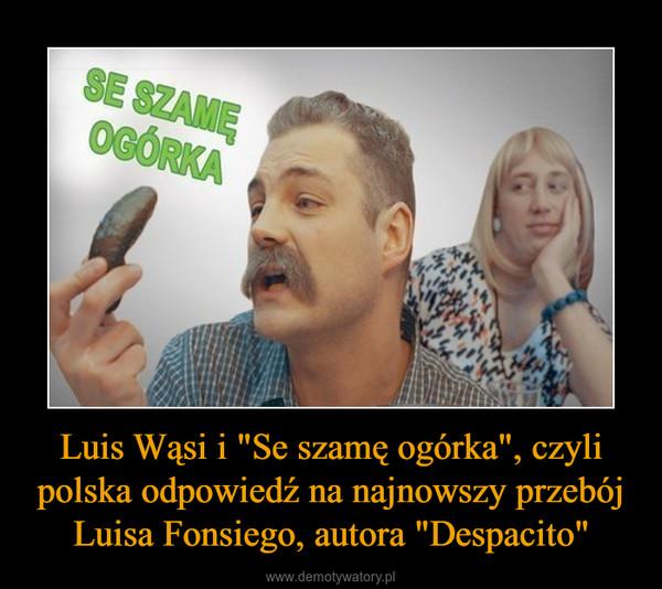 """Luis Wąsi i """"Se szamę ogórka"""", czyli polska odpowiedź na najnowszy przebój Luisa Fonsiego, autora """"Despacito"""" –"""