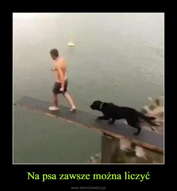 Na psa zawsze można liczyć –