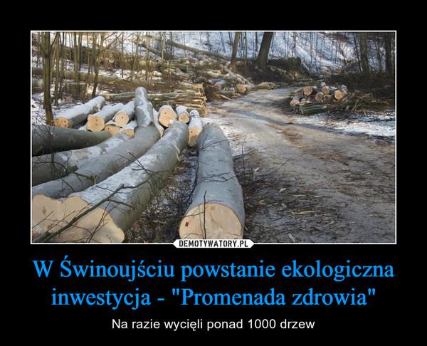 """W Świnoujściu powstanie ekologiczna inwestycja - """"Promenada zdrowia"""" – Na razie wycięli ponad 1000 drzew"""