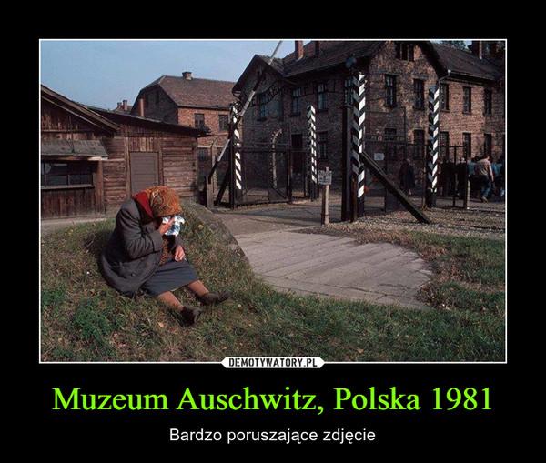 Muzeum Auschwitz, Polska 1981 – Bardzo poruszające zdjęcie