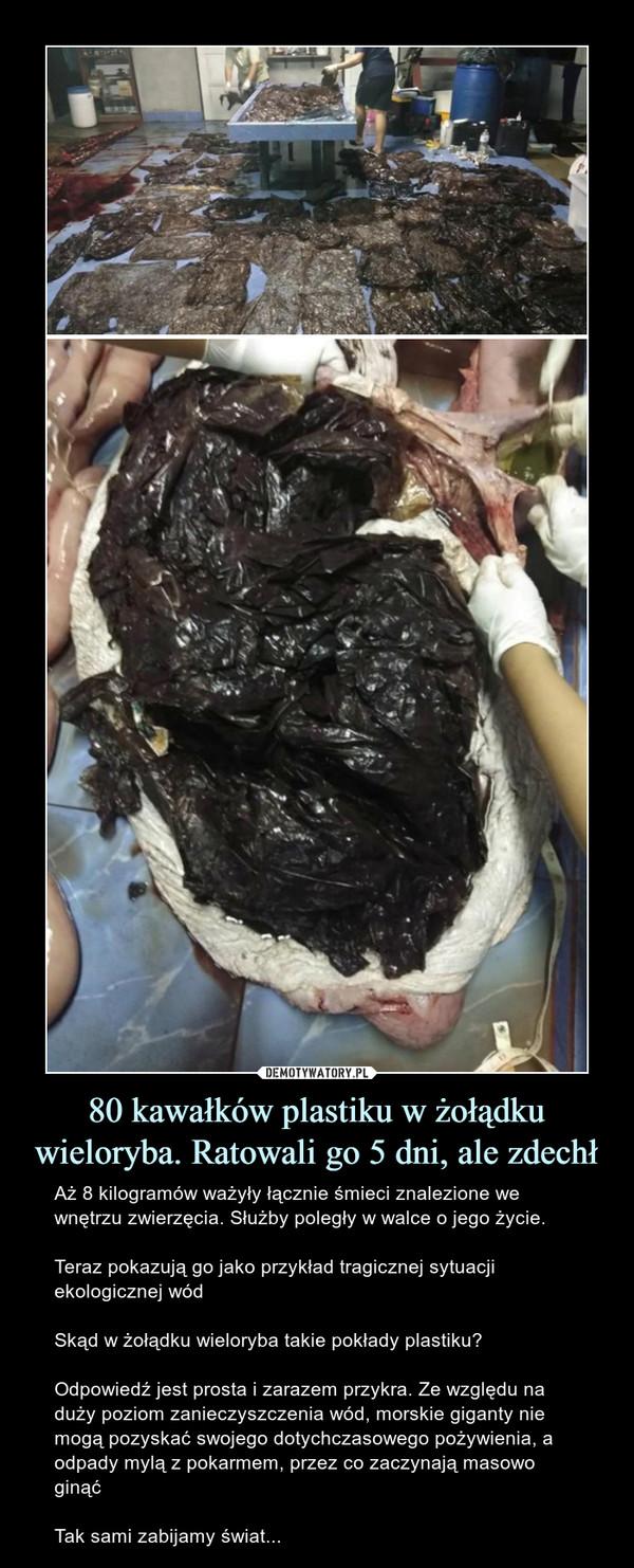 80 kawałków plastiku w żołądku wieloryba. Ratowali go 5 dni, ale zdechł – Aż 8 kilogramów ważyły łącznie śmieci znalezione we wnętrzu zwierzęcia. Służby poległy w walce o jego życie.Teraz pokazują go jako przykład tragicznej sytuacji ekologicznej wódSkąd w żołądku wieloryba takie pokłady plastiku? Odpowiedź jest prosta i zarazem przykra. Ze względu na duży poziom zanieczyszczenia wód, morskie giganty nie mogą pozyskać swojego dotychczasowego pożywienia, a odpady mylą z pokarmem, przez co zaczynają masowo ginąćTak sami zabijamy świat...