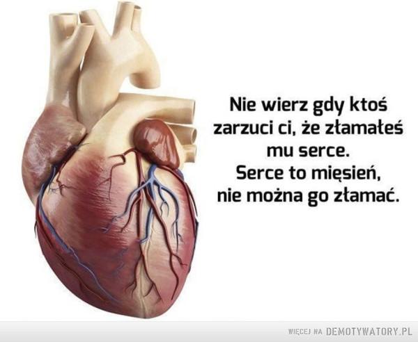 Zapamiętaj to sobie –  Nie wierz gdy ktoś zarzuci ci, że złamałeś mu serce. Serce to mięsień, nie można go złamać.