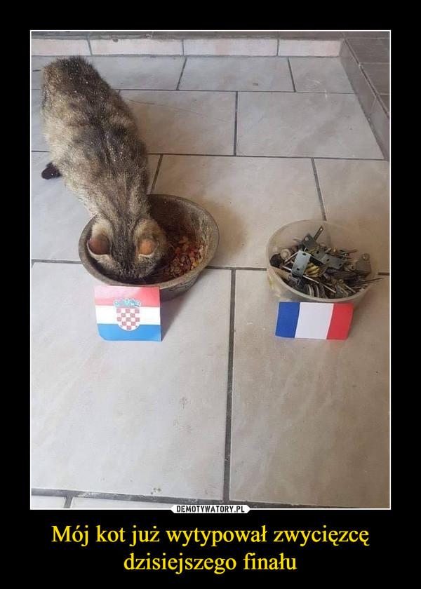 Mój kot już wytypował zwycięzcędzisiejszego finału –