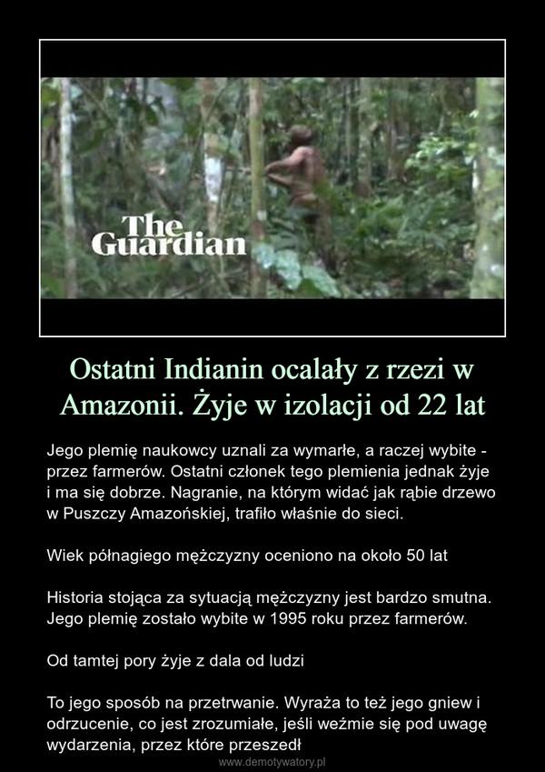 Ostatni Indianin ocalały z rzezi w Amazonii. Żyje w izolacji od 22 lat – Jego plemię naukowcy uznali za wymarłe, a raczej wybite - przez farmerów. Ostatni członek tego plemienia jednak żyje i ma się dobrze. Nagranie, na którym widać jak rąbie drzewo w Puszczy Amazońskiej, trafiło właśnie do sieci.Wiek półnagiego mężczyzny oceniono na około 50 latHistoria stojąca za sytuacją mężczyzny jest bardzo smutna. Jego plemię zostało wybite w 1995 roku przez farmerów.Od tamtej pory żyje z dala od ludziTo jego sposób na przetrwanie. Wyraża to też jego gniew i odrzucenie, co jest zrozumiałe, jeśli weźmie się pod uwagę wydarzenia, przez które przeszedł
