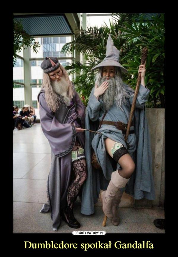 Dumbledore spotkał Gandalfa –