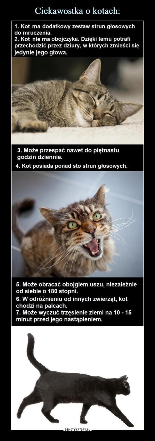 –  1. Kot ma dodatkowy zestaw strun głosowychdo mruczenia.2. Kot nie ma obojczyka. Dzięki temu potrafiprzechodzić przez dziury, w których zmieści sięjedynie jego głowa.3. Może przespać nawet do piętnastugodzin dziennie.4. Kot posiada ponad sto strun głosowych.5. Może obracać obojgiem uszu, niezależnieod siebie o 180 stopni.6. W odróżnieniu od innych zwierząt, kotchodzi na palcach.7. Może wyczuć trzęsienie ziemi na 10 15minut przed jego nastąpieniem.