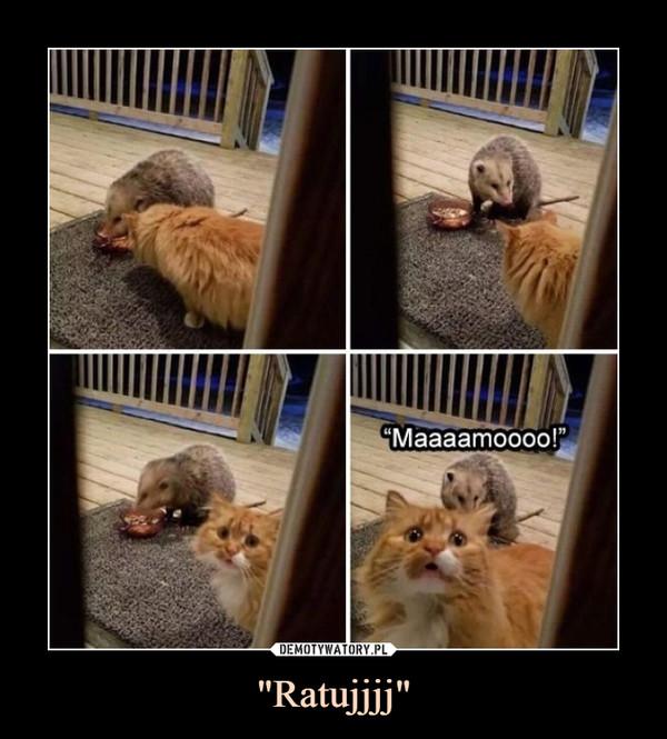 """""""Ratujjjj"""" –  """"Maaaaamooooo!"""""""