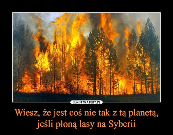Wiesz, że jest coś nie tak z tą planetą, jeśli płoną lasy na Syberii –