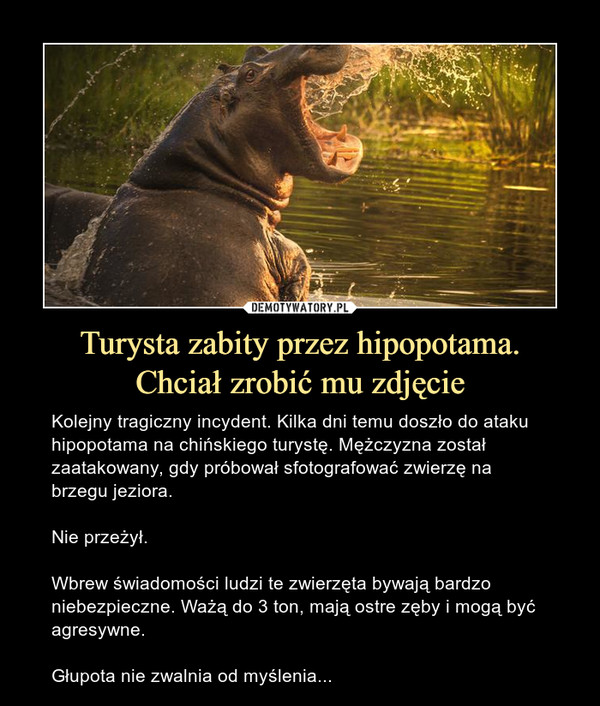 Turysta zabity przez hipopotama.Chciał zrobić mu zdjęcie – Kolejny tragiczny incydent. Kilka dni temu doszło do ataku hipopotama na chińskiego turystę. Mężczyzna został zaatakowany, gdy próbował sfotografować zwierzę na brzegu jeziora.Nie przeżył.Wbrew świadomości ludzi te zwierzęta bywają bardzo niebezpieczne. Ważą do 3 ton, mają ostre zęby i mogą być agresywne.Głupota nie zwalnia od myślenia...