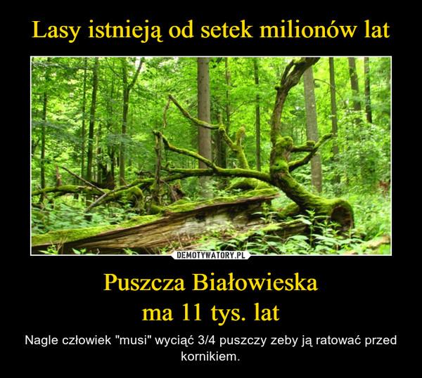 """Puszcza Białowieskama 11 tys. lat – Nagle człowiek """"musi"""" wyciąć 3/4 puszczy zeby ją ratować przed kornikiem."""