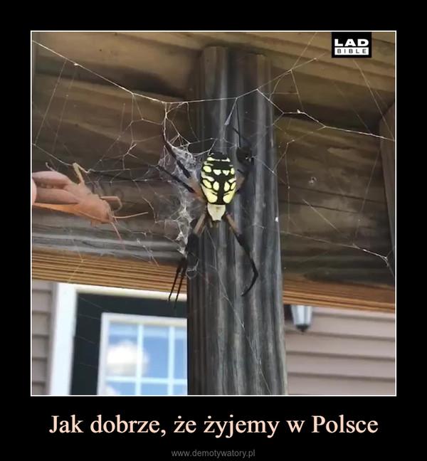 Jak dobrze, że żyjemy w Polsce –