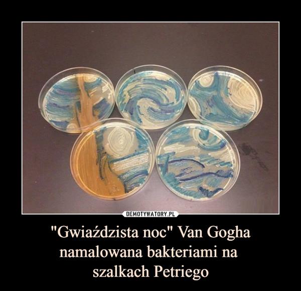 """""""Gwiaździsta noc"""" Van Gogha namalowana bakteriami na szalkach Petriego –"""