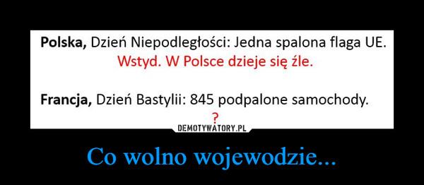 Co wolno wojewodzie... –  Polska, Dzień Niepodległości: Jedna spalona flaga UEWstyd. W Polsce dzieje się źle.Francja, Dzień Bastylii: 845 podpalone samochody.