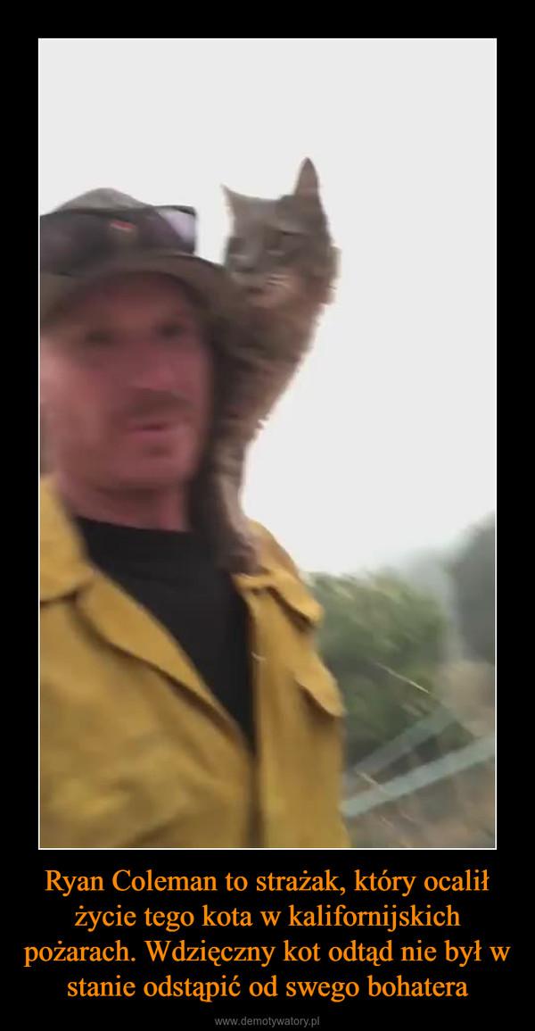 Ryan Coleman to strażak, który ocalił życie tego kota w kalifornijskich pożarach. Wdzięczny kot odtąd nie był w stanie odstąpić od swego bohatera –