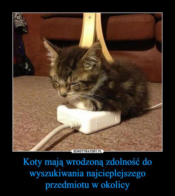 Koty mają wrodzoną zdolność do wyszukiwania najcieplejszego przedmiotu w okolicy –