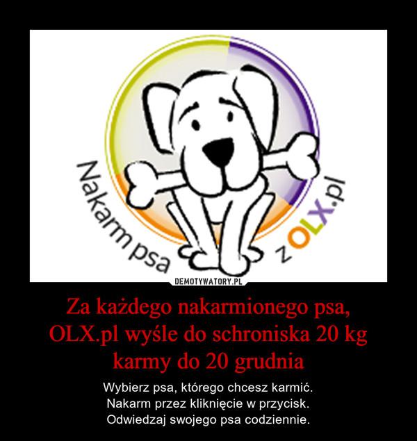 Za każdego nakarmionego psa,OLX.pl wyśle do schroniska 20 kg karmy do 20 grudnia – Wybierz psa, którego chcesz karmić.Nakarm przez kliknięcie w przycisk.Odwiedzaj swojego psa codziennie.
