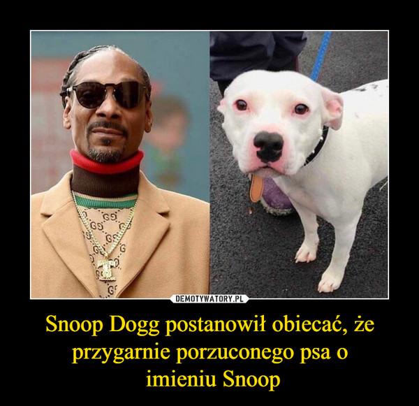 Snoop Dogg postanowił obiecać, że przygarnie porzuconego psa o imieniu Snoop –