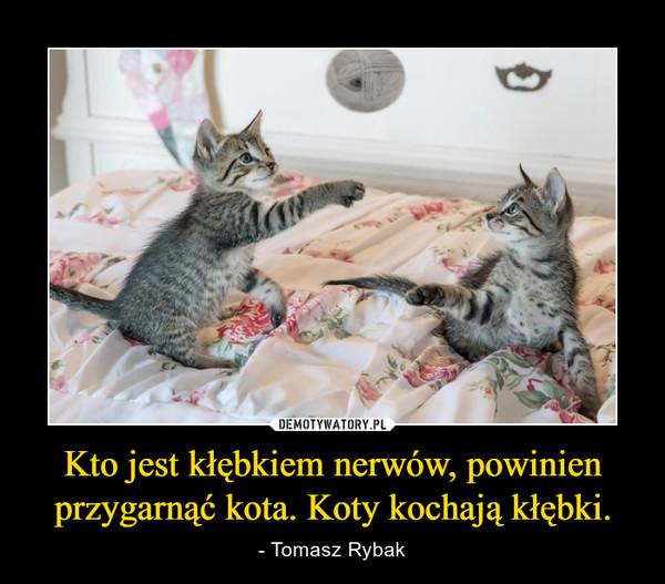 Kto jest kłębkiem nerwów, powinien przygarnąć kota. Koty kochają kłębki. – - Tomasz Rybak