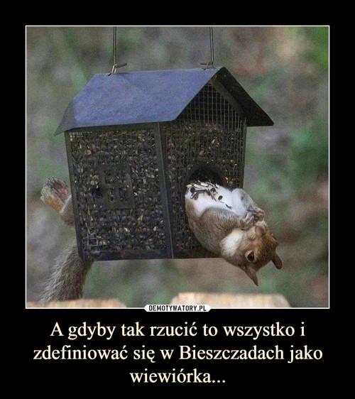 A gdyby tak rzucić to wszystko i zdefiniować się w Bieszczadach jako wiewiórka...