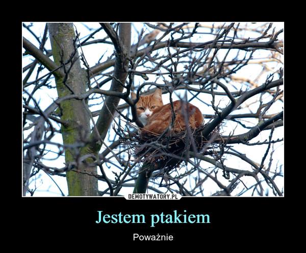 Jestem ptakiem – Poważnie