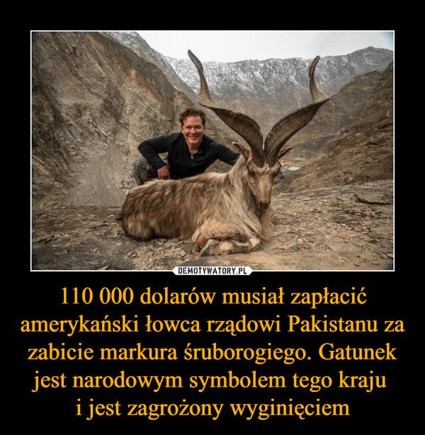 110 000 dolarów musiał zapłacić amerykański łowca rządowi Pakistanu za zabicie markura śruborogiego. Gatunek jest narodowym symbolem tego kraju i jest zagrożony wyginięciem –