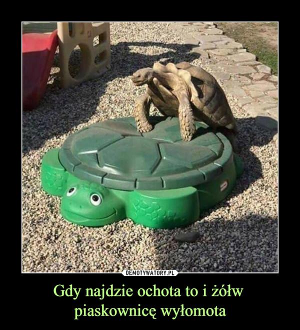 Gdy najdzie ochota to i żółw piaskownicę wyłomota –