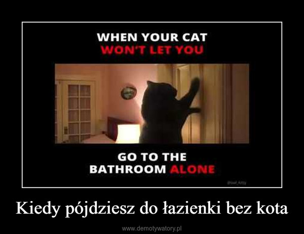 Kiedy pójdziesz do łazienki bez kota –