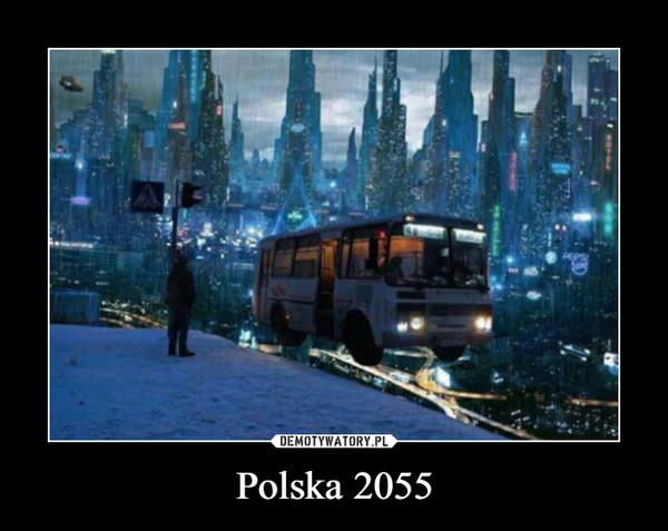 Polska 2055 –