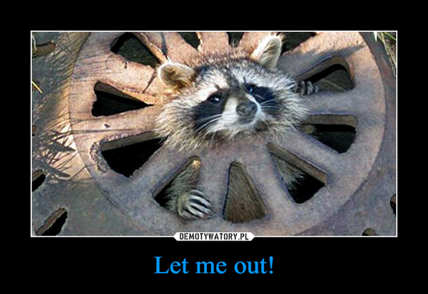 Let me out! –