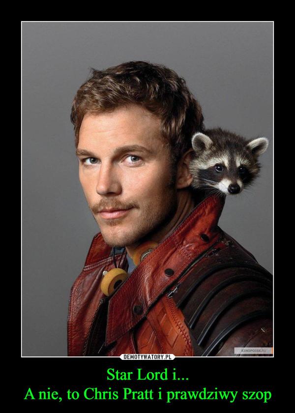 Star Lord i...A nie, to Chris Pratt i prawdziwy szop –