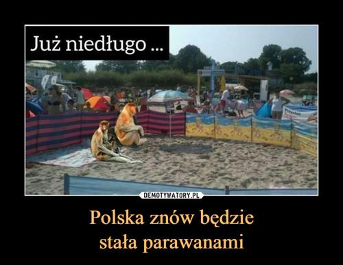 Polska znów będzie stała parawanami