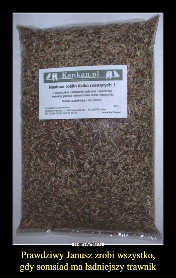 Prawdziwy Janusz zrobi wszystko,gdy somsiad ma ładniejszy trawnik –