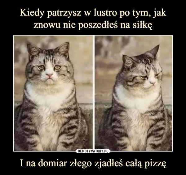 I na domiar złego zjadłeś całą pizzę –